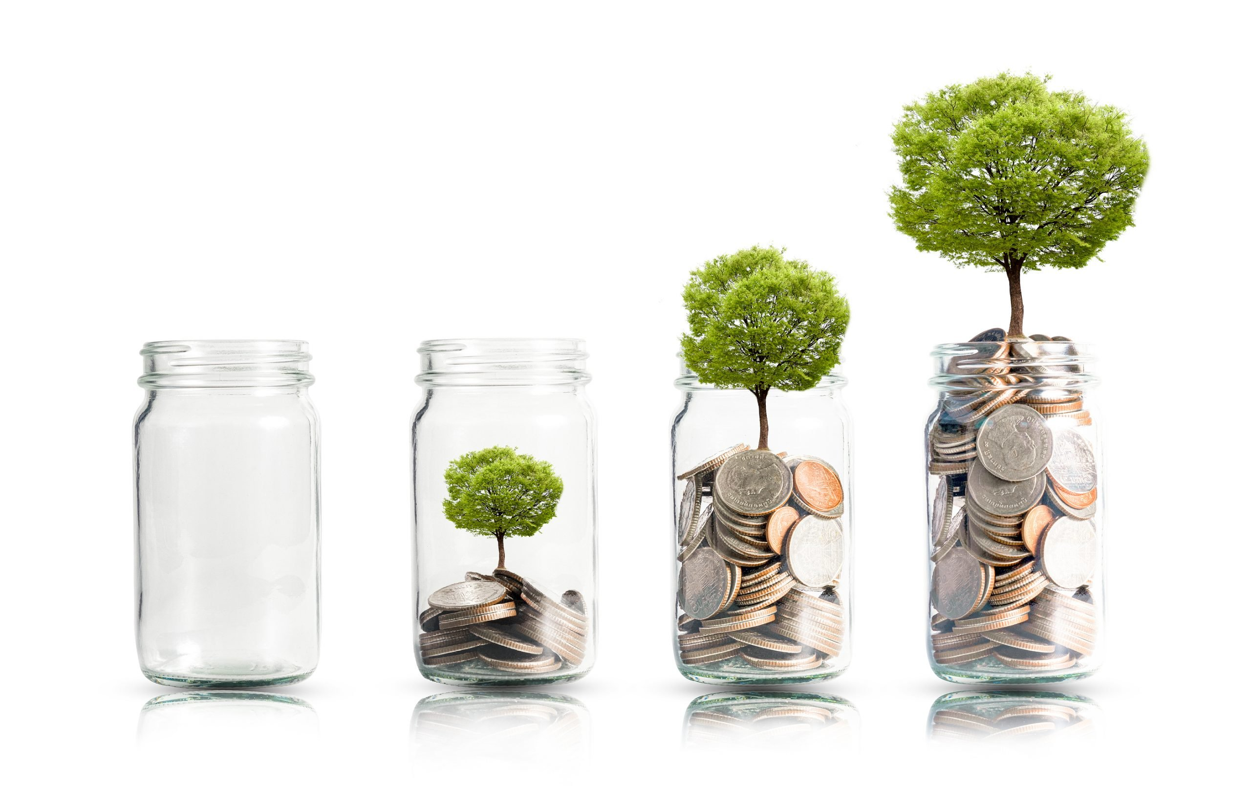 Money Coins And Tree Growing In Jar. Profit On Deposit In Bank A